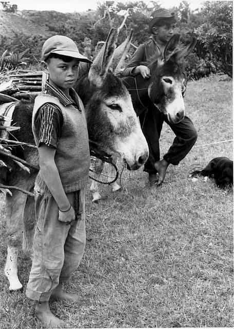 Two donkey keepers, photographed in 1968