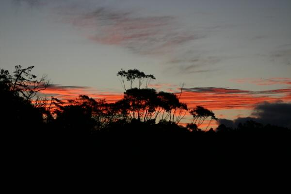 Sunset, taken from our home at Burgh House  (Click to see the full-sized image, opens in a new window or tab)