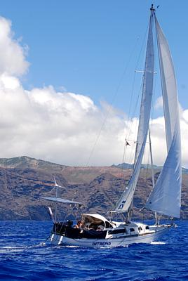 Zac Sunderland, arriving in March 2009 during his attempt to become the youngest person to make a circumnavigation single-handed (Photo: St. Helena Independent)  (Click to see the full-sized image, opens in a new window or tab)